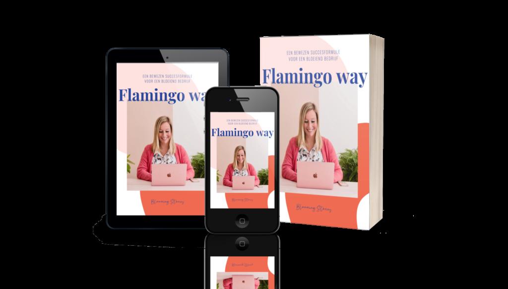 Flamingo Way Cover ebook
